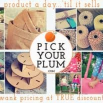 Pick Your Plum Flash Giveaway!