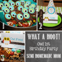 Owl 1st Birthday Party