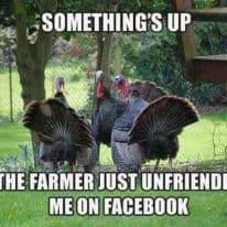 Happy Thanksgiving! 2013