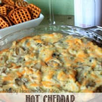 Hot Cheddar Mushroom Spread and a VinoVinti Review!