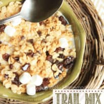 Trail Mix Cereal