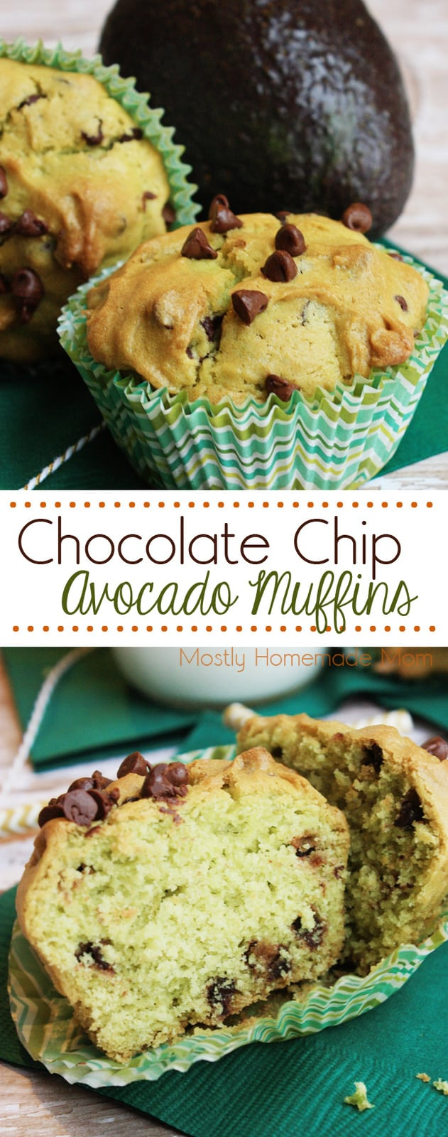 Chocolate Chip Avocado Muffins - made with fresh mashed avocados and mini chocolate chips are perfect in the morning with a cup of coffee!