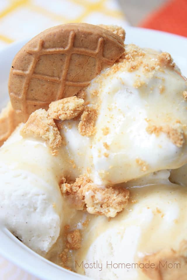 Peanut Butter Cookie Ice Cream Sundae recipe with peanut butter sauce and Nutter Butters