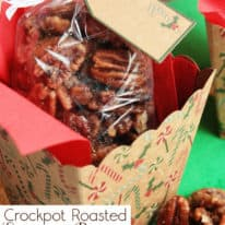 Crockpot Roasted Sugared Pecans – VIDEO