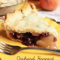 Orchard Harvest Fruit Pie
