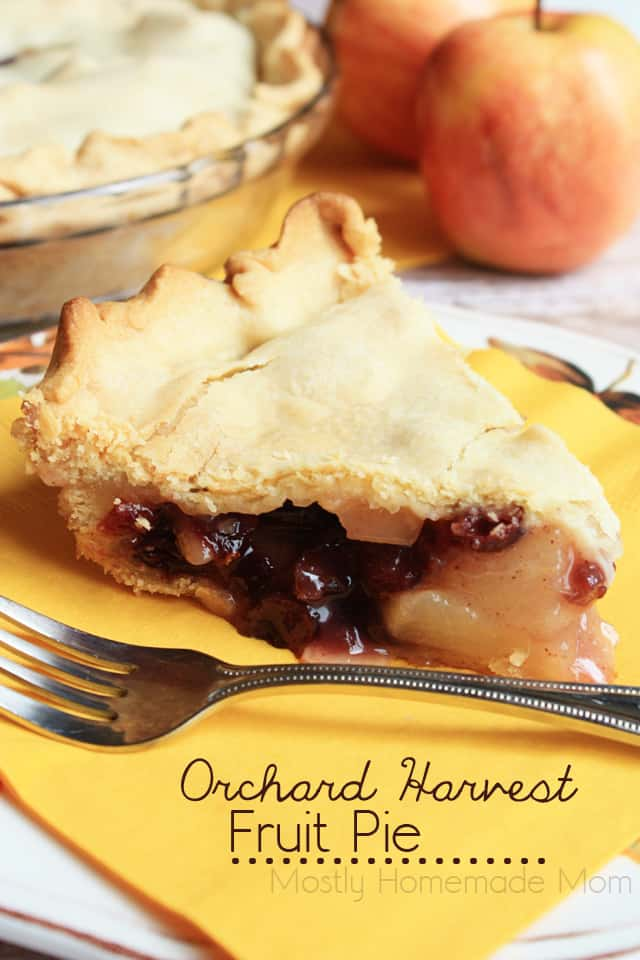 Orchard Harvest Fruit Pie