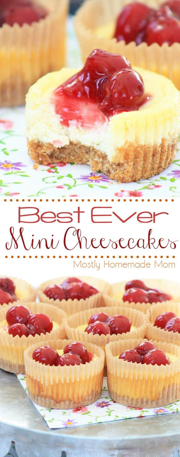 THE BEST recipe ever for Mini Cheesecakes! Cheesecake filling with graham cracker crust made in cupcake tins. My kids beg me to make these again and again! #minicheesecakes #cheesecake #recipe #dessert